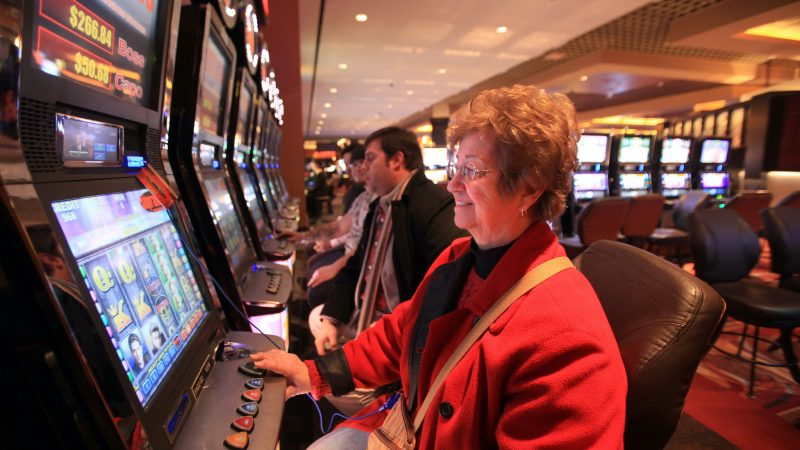 Beginners should check out 4 essential facts about live casino